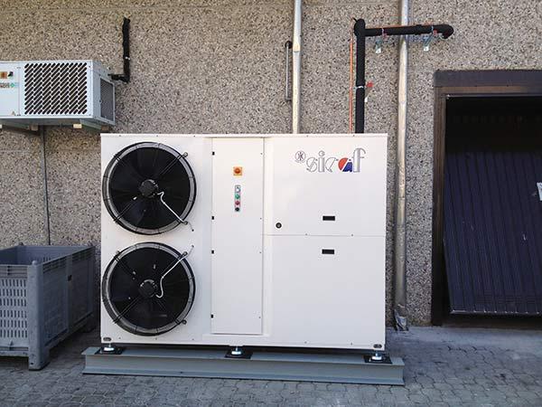 Installazione-celle-frigorifere-per-fiori-Casalmaggiore